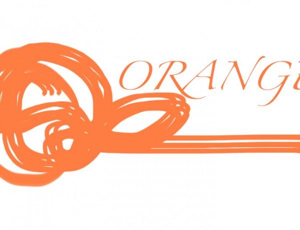Spring Inspiration Orange